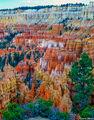 Colorful Bryce Canyon print