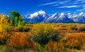 Grand Tetons Fall Colors print