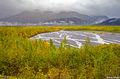 Kenai Fjords Alaska print