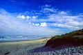 Oregon Beach print