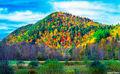Vermont Foliage print