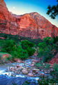 Virgin River Zion print