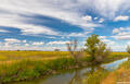 Yolo County Irrigation Channel