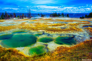 Yellowstone Thermal Springs