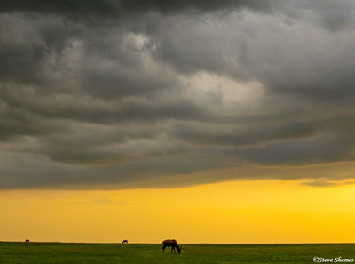 masai mara, african sunset, kenya