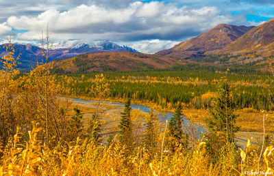 george parks highway, alaska, creek