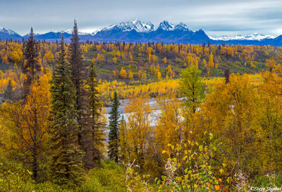 george parks highway, alaska range
