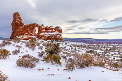 photographing, arches national park snow, utah