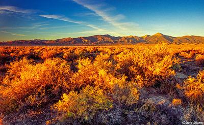baker nevada, after sunrise, golden light
