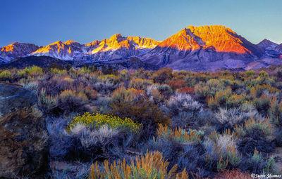 bishop california, apenglow, sunrise