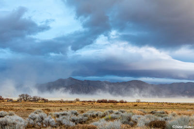 windstorm, black rock desert, nevada, alkaline soil