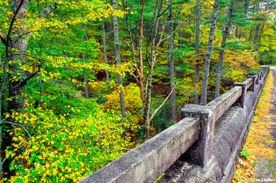 rustic bridge, blue ridge parkway, virginia