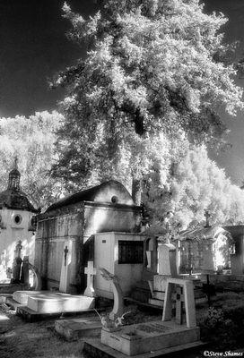 morelia cemetery, mexico, infrared film