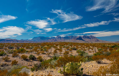big bend national park, west texas, chisos mountains
