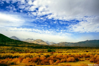 bishop, california, owens valley, sierras
