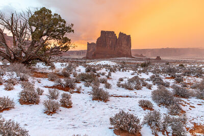 arches national park, courthouse towers, utah