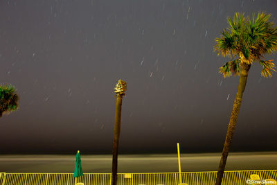 daytona beach, florida, falling stars