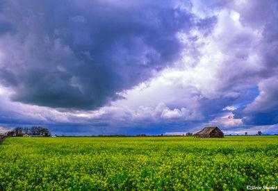 sacramento valley, california, dramatic sky
