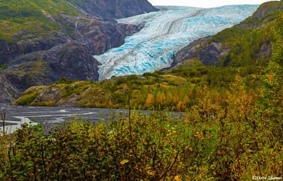 kenai fjords national park, Alaska, exit glacier