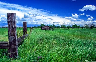 elverta, rural scene, sacramento valley, california
