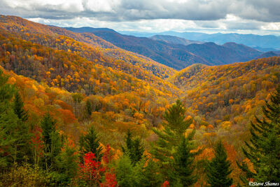 Great Smokey Mountains Fall Color
