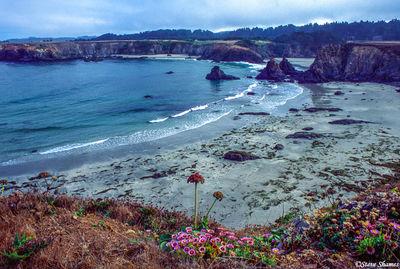 jug hadle beach, mendocino county, california