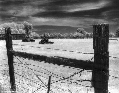 rural sacramento county, california, infrared film, junked trucks