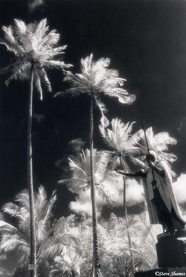 big island, hawaii, king kamehameha