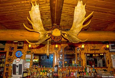 monderosa bar and grill, nenana, moose antlers
