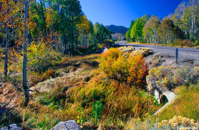 highway 89, california, mountain colors