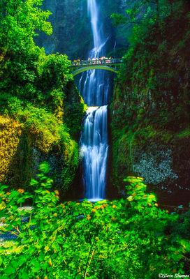 multnomah falls, columbia river gorge, oregon, tourist attraction