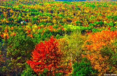 white mountains, new hampshire, new england, fall colors