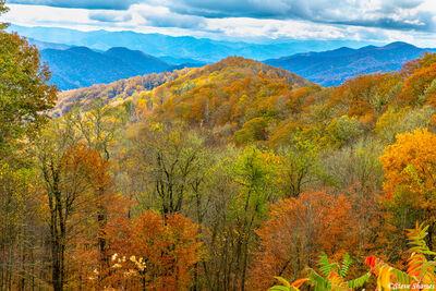 North Carolina Fall Colors
