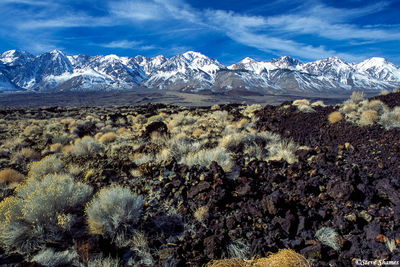 owens valley, california, lava, snowy sierras