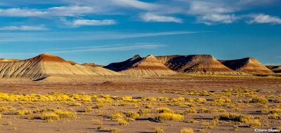 painted desert, national park, arizona