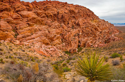 red rock canyon, national conservation area, nevada