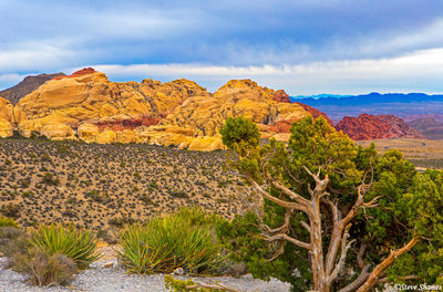 red rock canyon, nevada, great view