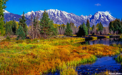 grand tetons, national park, wyoming, schwabacher road