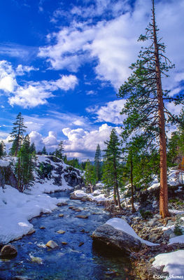 sierra nevada mountains, california, fresh snow