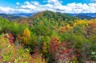 Smokey Mountains Color