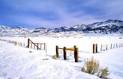 bridgeport, california, fresh snow