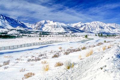 Snowy Sierra Scene