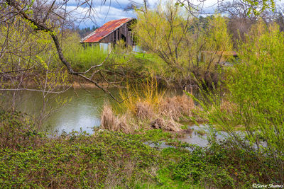 sierra foothills, somerset california, country scene