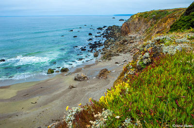 sonoma county, rocky coastline