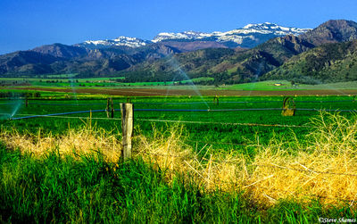 warner mountains, snow capped, surprise valley, california