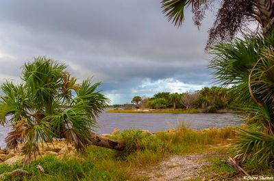 tomoka state park, daytona beach, florida