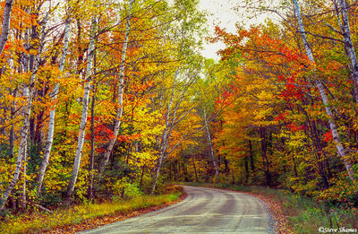 new hampshire, new england, fall colors
