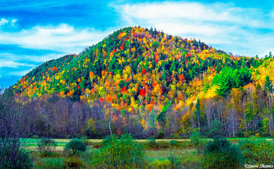 vermont, new england, foliage, coat of many colors