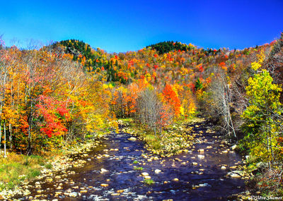 vermont, new england, river scence
