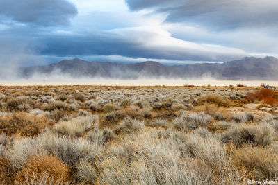 black rock desert, nevada, windy day